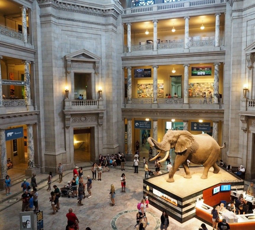Been there Smithsonian Museum of Natural History