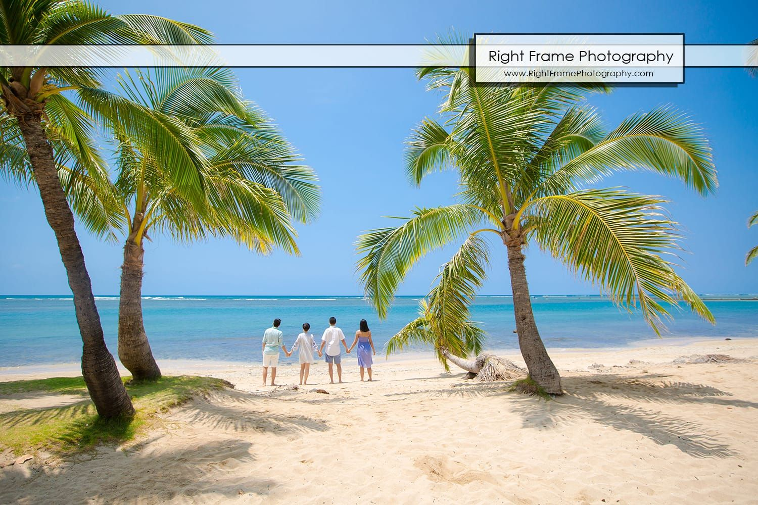 Family Photographer Near Waikiki Beach Honolulu Oahu By