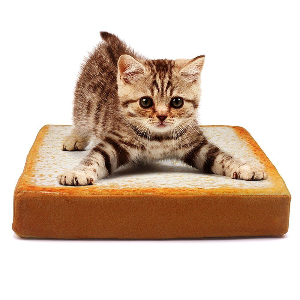 ZRSE Pet Mattress for Cats and Small Dogs Rectangular