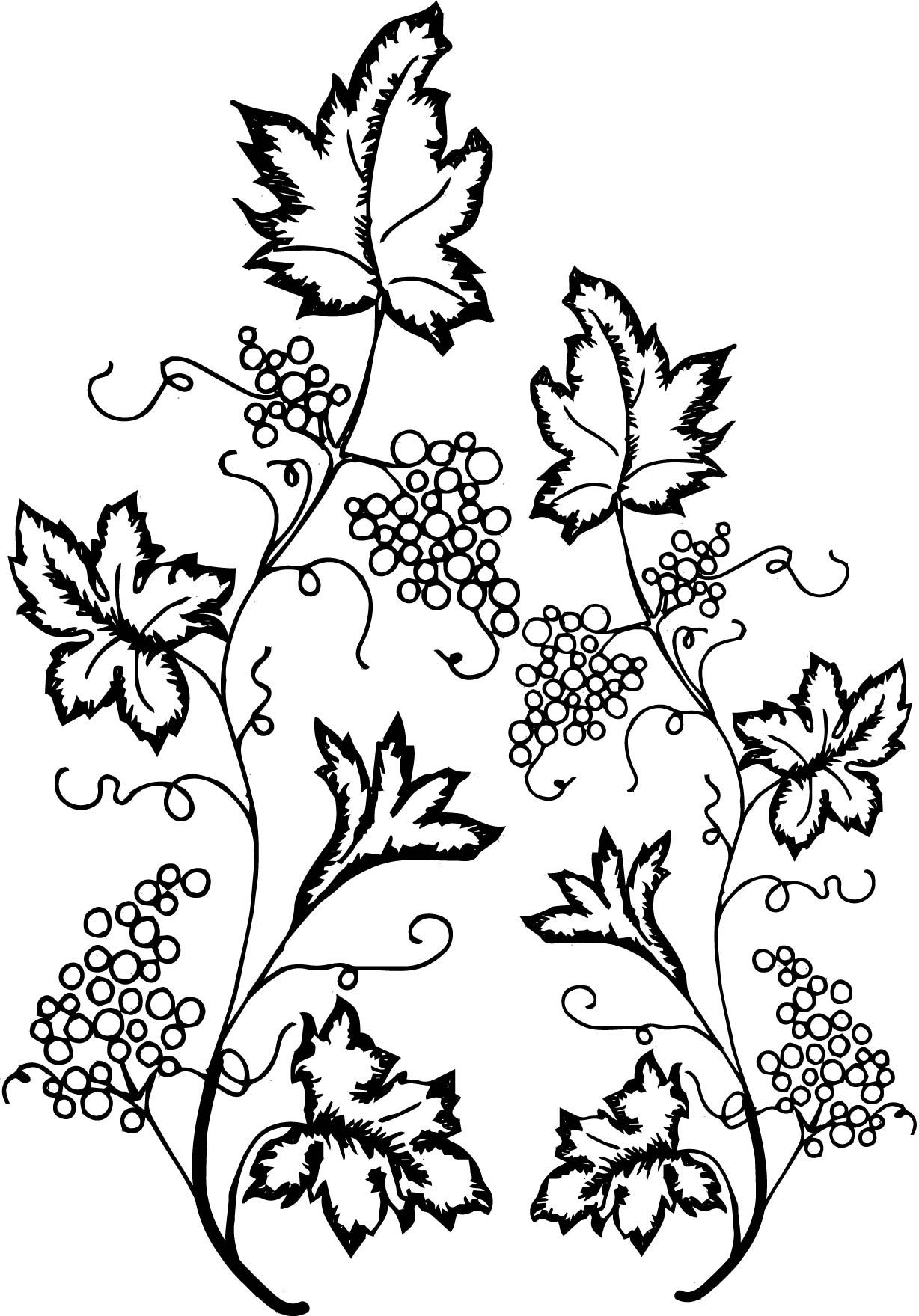 Nice Grape Leaf Ivy Coloring Page Printable Flower Coloring Pages Coloring Pages Flower Coloring Pages