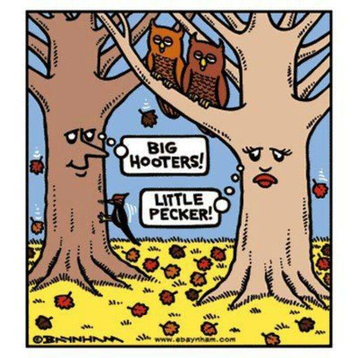 Big hooters, little pecker-lol-