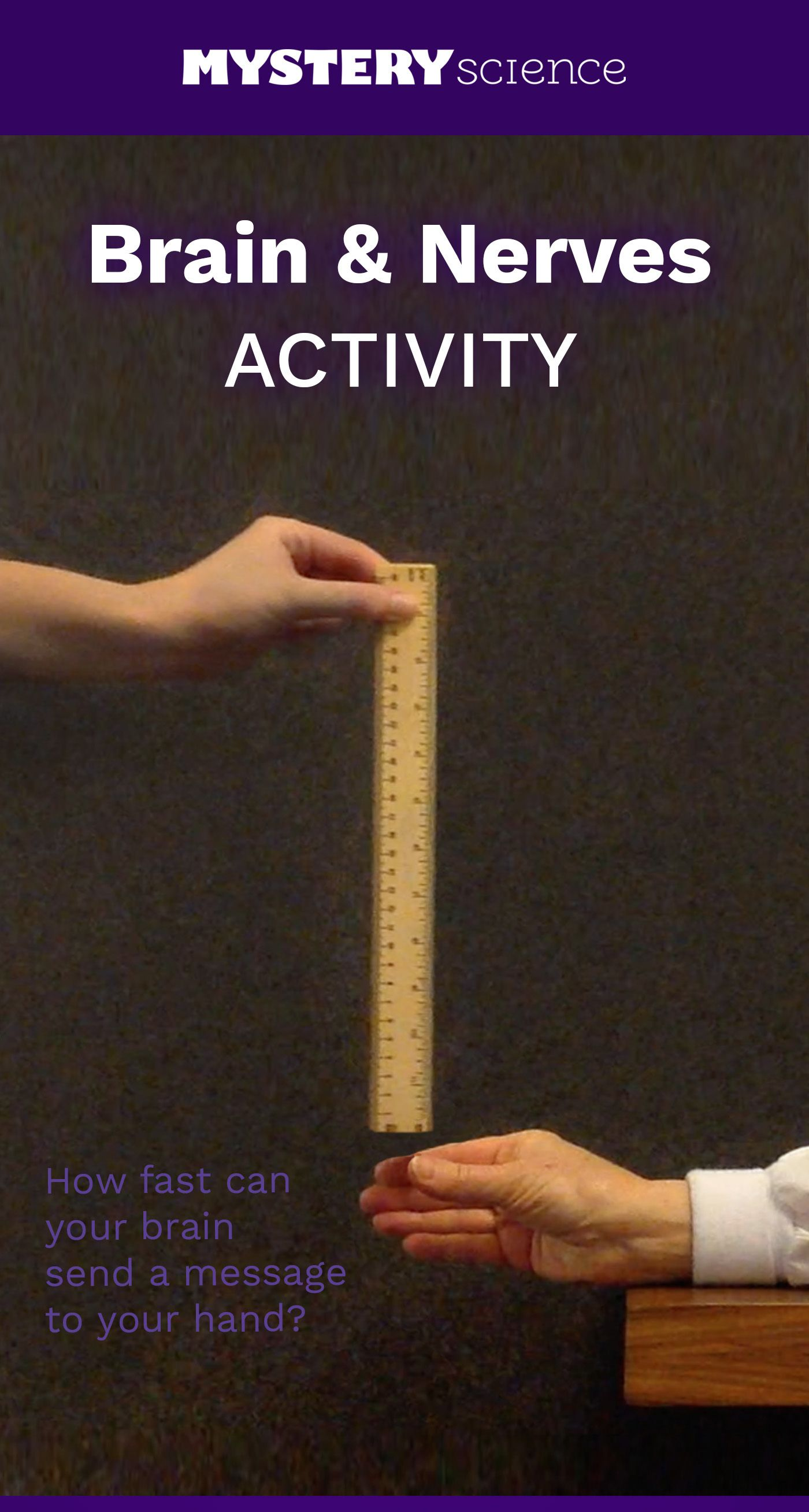 Reaction Time Activity