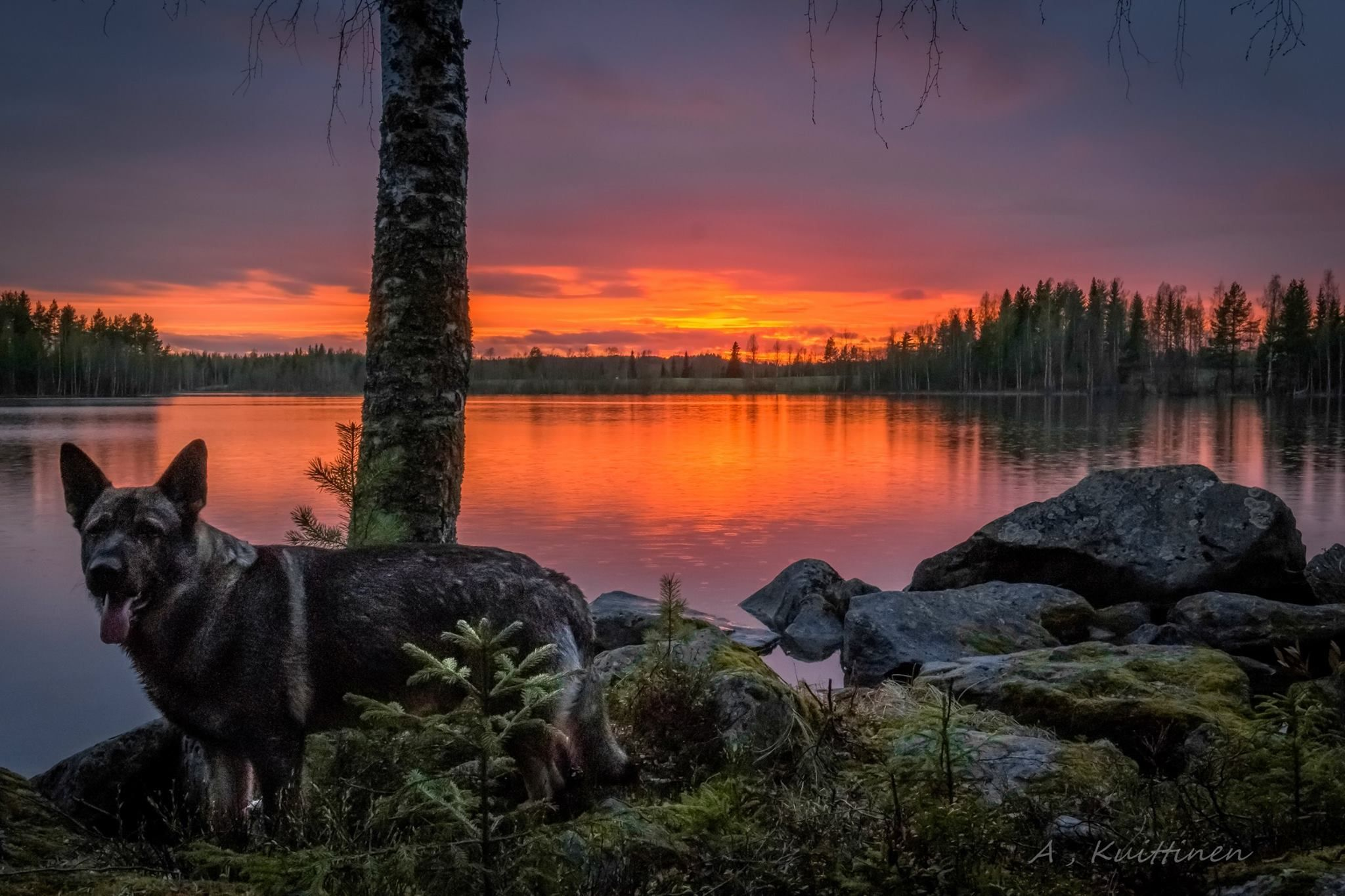 A. Kuittinen - Suomalainen maisema