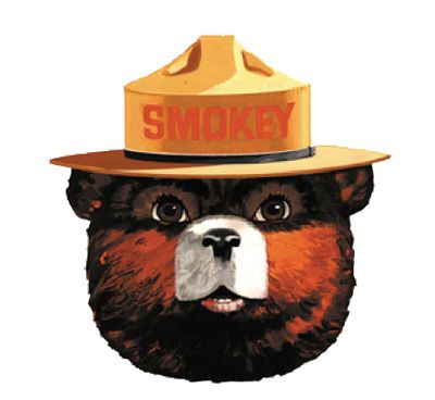 The Material Review Smokey The Bears Bear Face Smokey