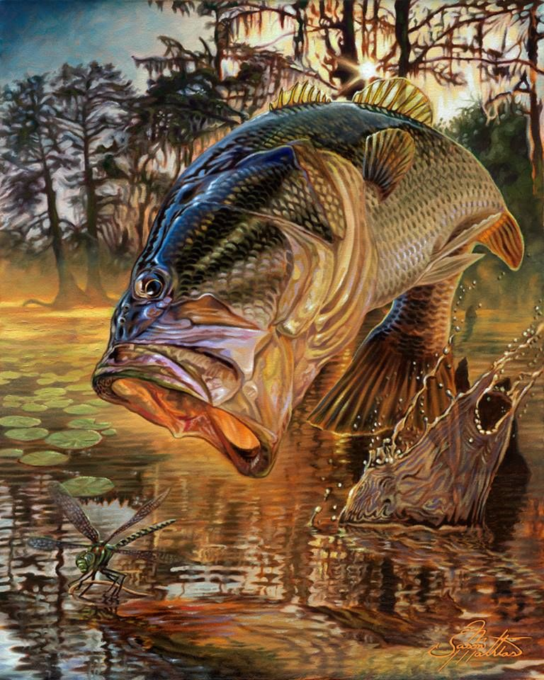 Рыбалка живые картинки