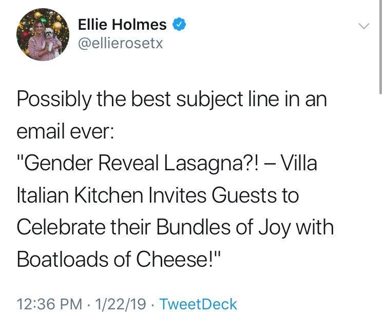 This Horrific Gender Reveal Lasagna Is Making Everyone On Twitter Ask Why Gender Reveal Funny Tweets Gender