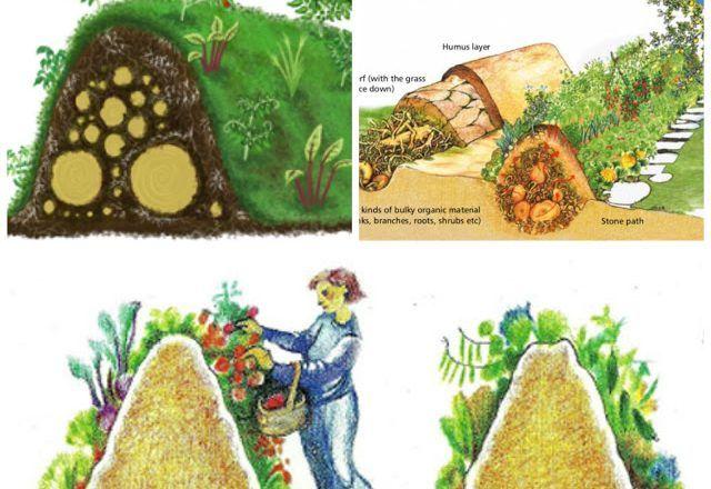 Hugelkultur: Natural Permaculture Gardening