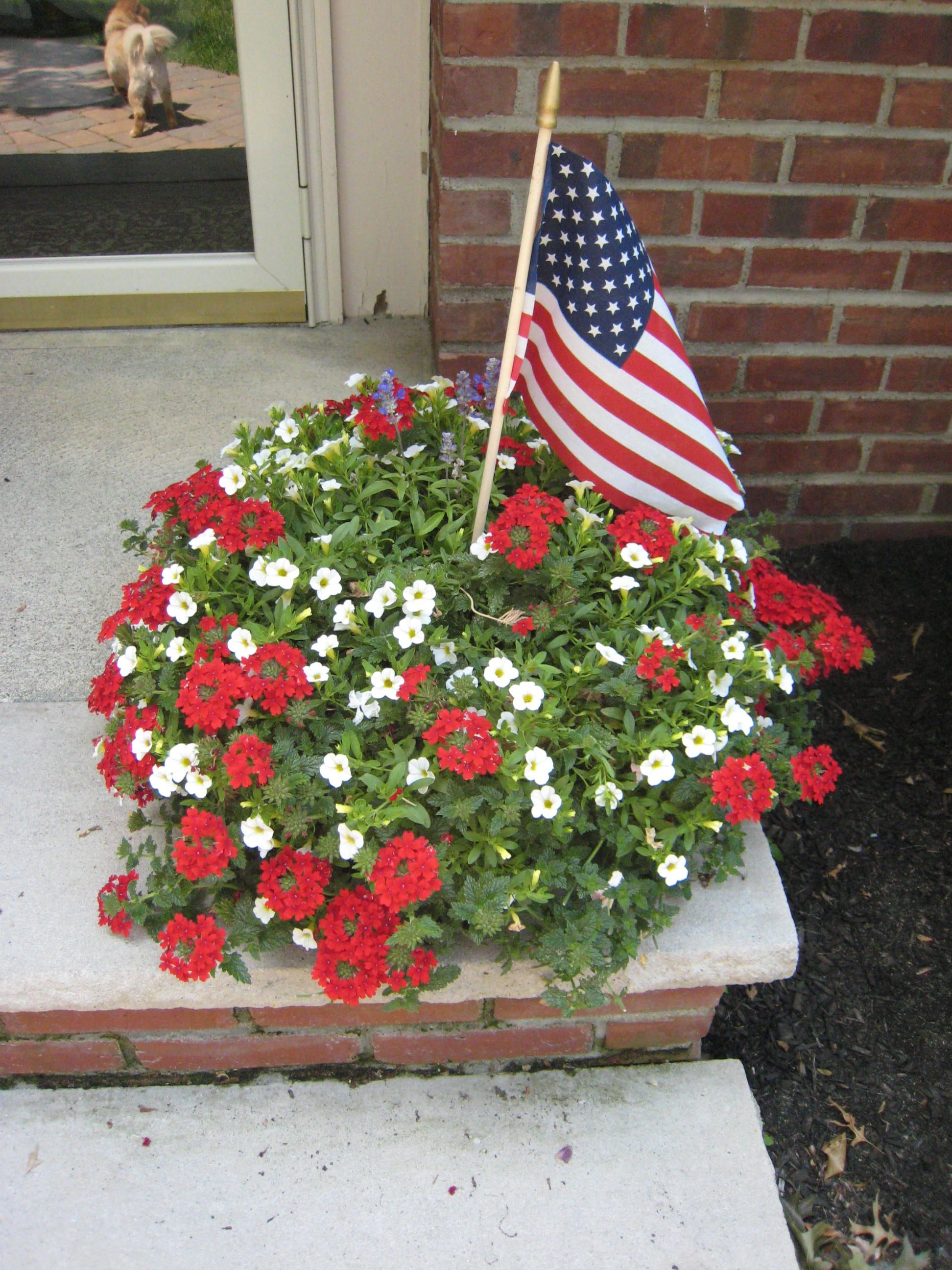 Red And White Flowers With The Flag 4th Of July Pinterest Flags