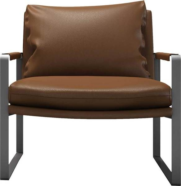 Charles Armchair Lion Armchair Chair Sit Back Relax