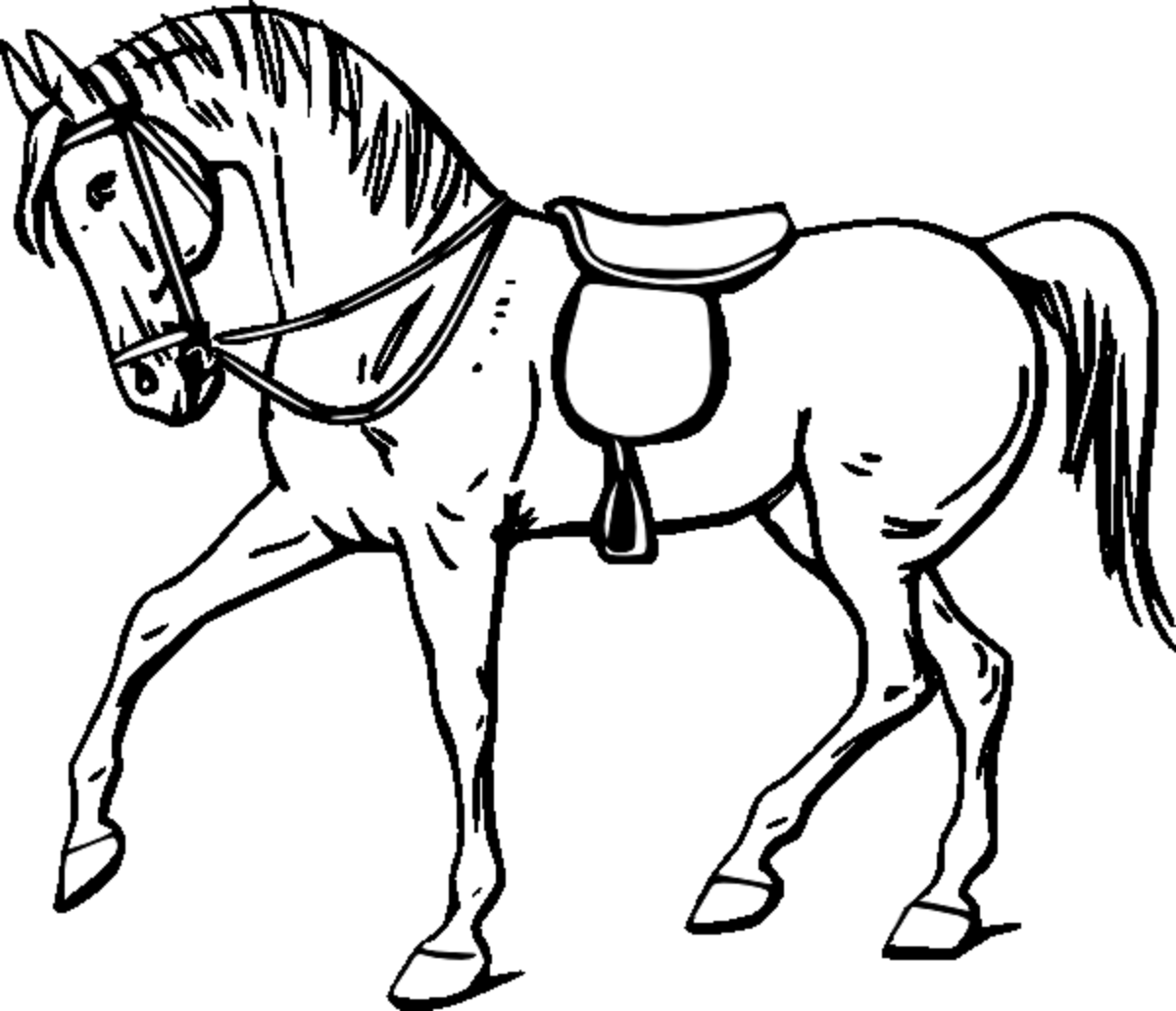 Uncategorized Horse Drawing For Kids coloring pictures of horses images my horse haven pinterest horse