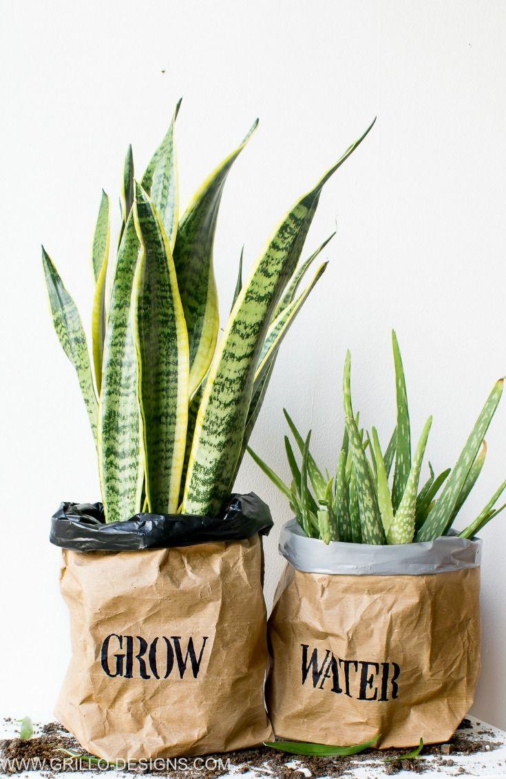 Diy Kraft Paper Planter Bag Tutorial Planters Kraft Paper