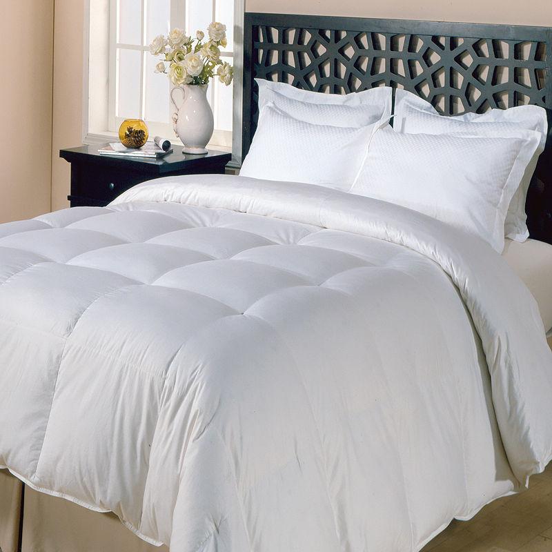 Blue Ridge Home Fashions Copenhagen Extra Warm Down Comforter