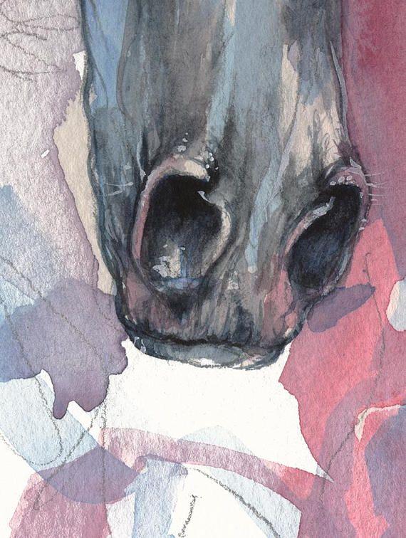 Arabian horse, equine art, equestrian, horse portrait, original ...