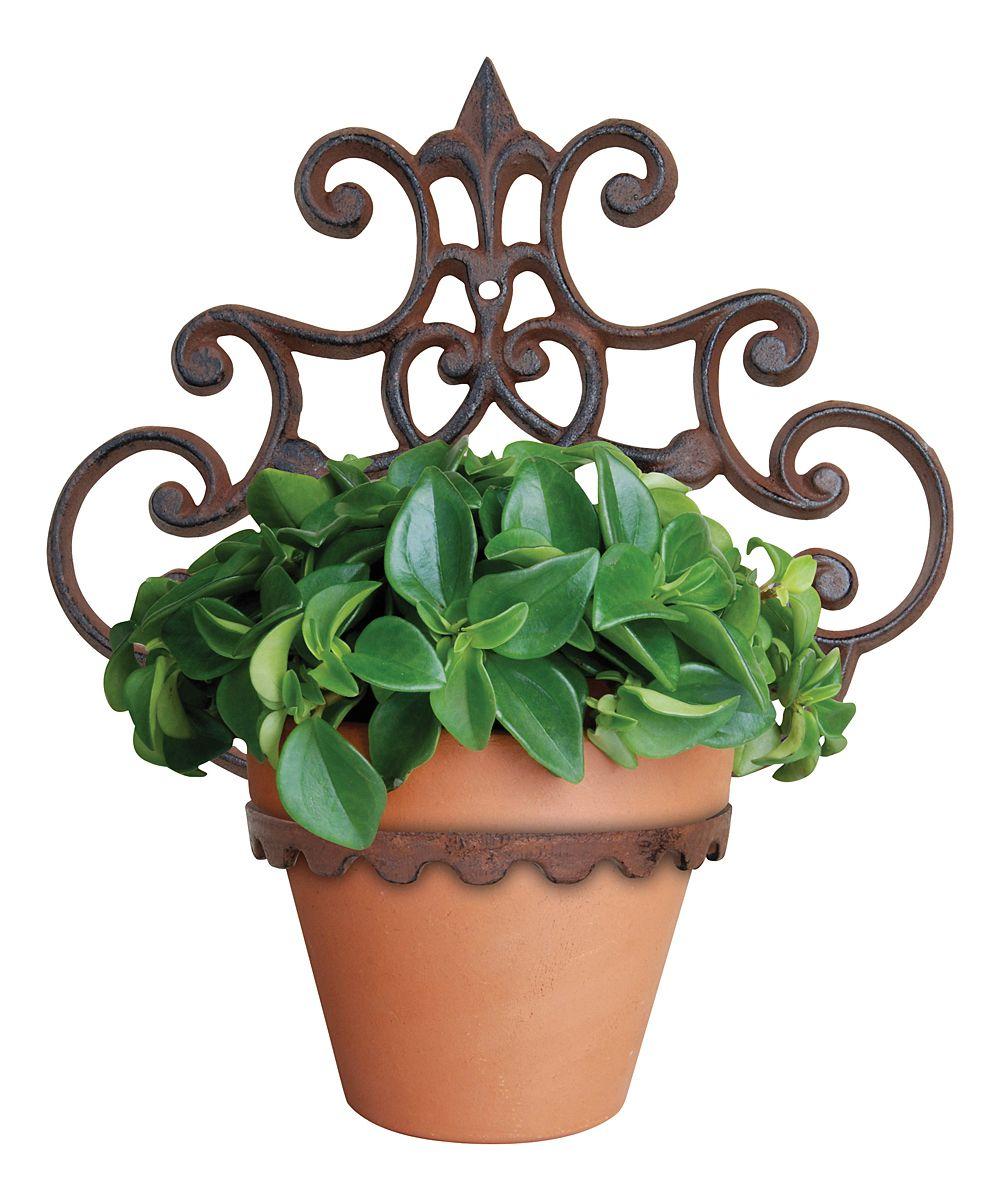 Cast Iron Flowerpot Holder Zulily Flower Pots Flower Pot Holder Large Flower Pots