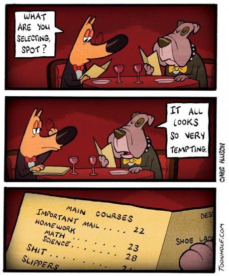 c77b1135267 Fancy Dog Restaurant The Funny