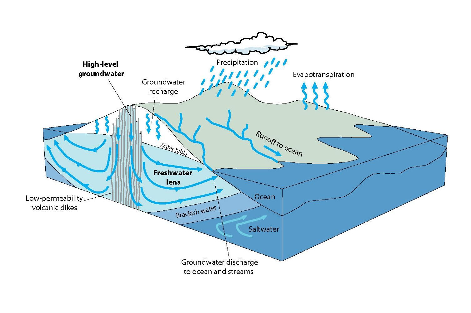 diagram showing relation between groundwater and precipitation
