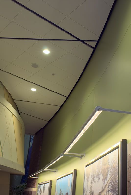 Acoustic Wall Panels From Conwed Designscape Acoustical Ceiling Ceiling Panels Acoustic Wall Panels