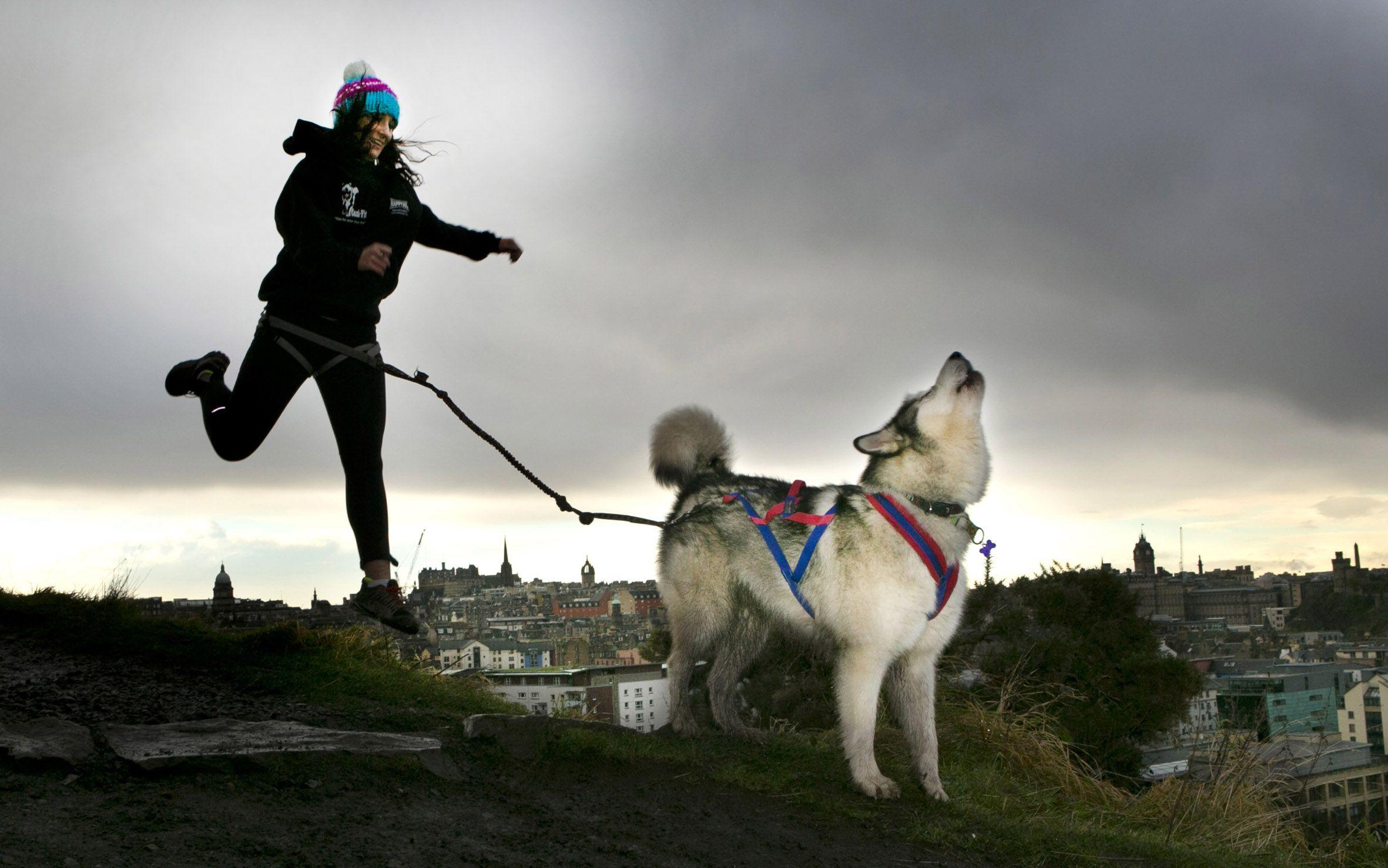 Edinburgh's Dogmanay on 1 January 2013 at Holyrood Park