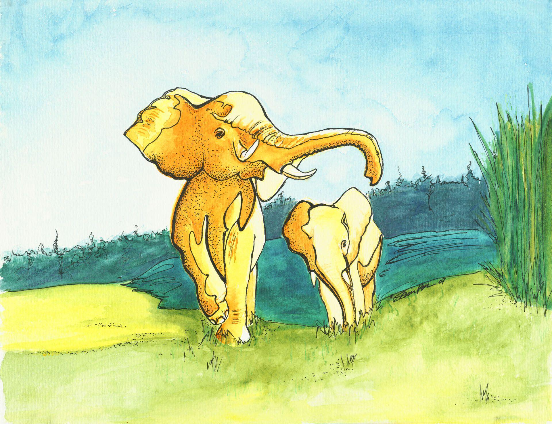 Elephants by Sheila Petersen facebook/sheilapetersenminneapolis water color