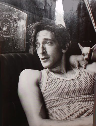 Loving this Noir pic with wee Cee-lo on his shoulder. Adrien is of this pic so hot, omg ♥