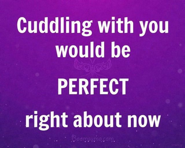 Cute Love Quotes From The Heart You Would Be Perfect Now Sweet Love