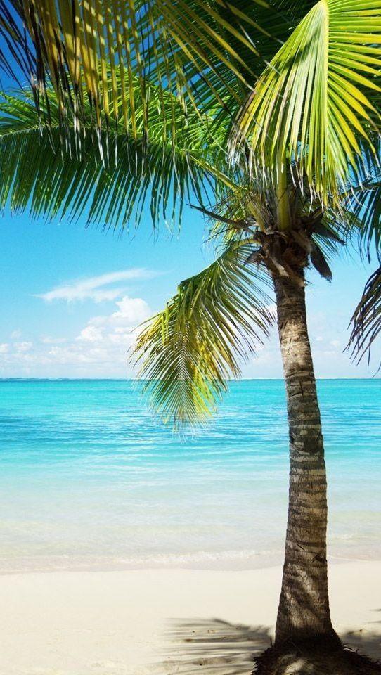Beach Tranquility!