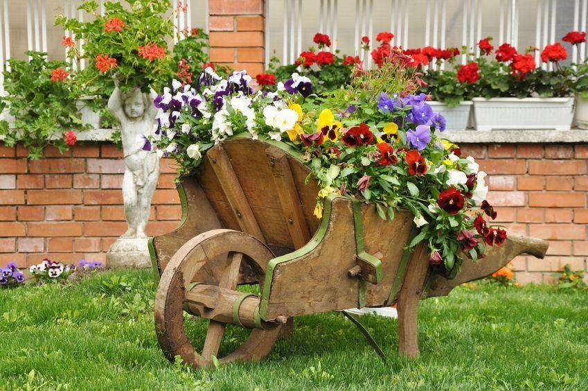 Aranzacja Ogrodowa Z Bratkami W Roli Glownej Design Urzadzanie Urzarzaniewnetrz Urza Small Backyard Landscaping Backyard Landscaping Designs Garden Design