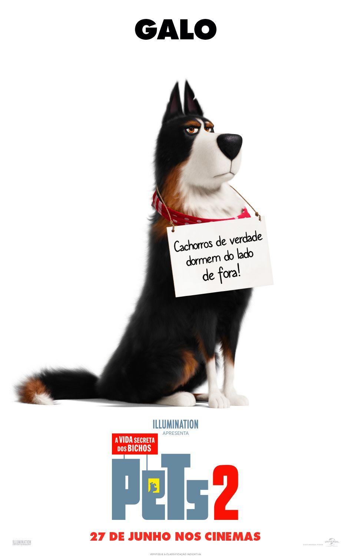 Vida Secreta De Maria Clara Souza Em Filme Pets Desenhos De
