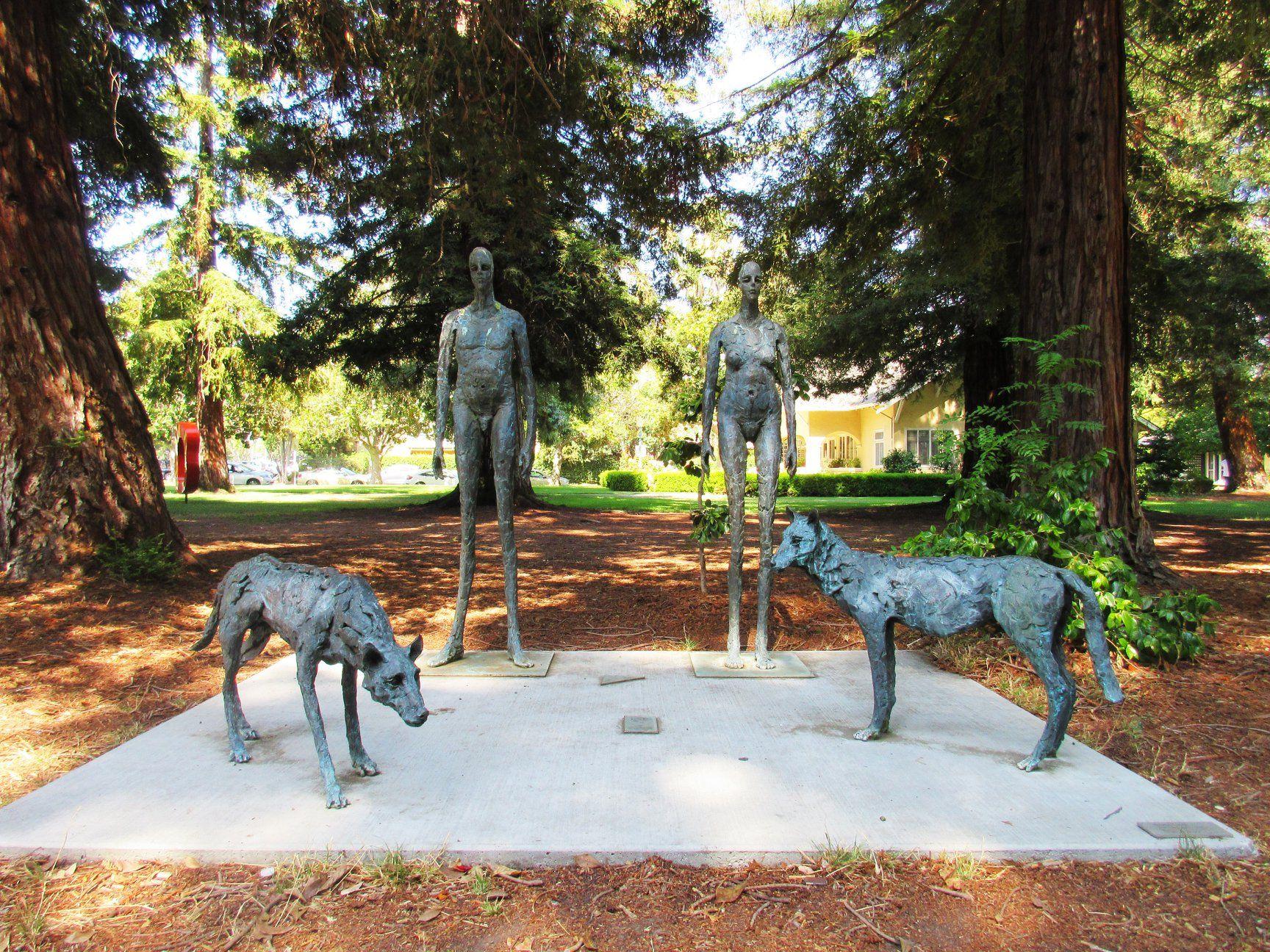 Craigslist Bay Area Pets San Jose - Pets and Animal Educations