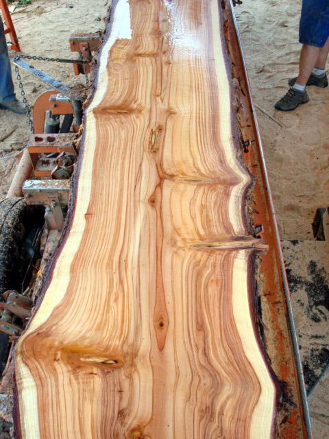 Solid wood slab totally doing this for our kitchen for Wood slab bar top