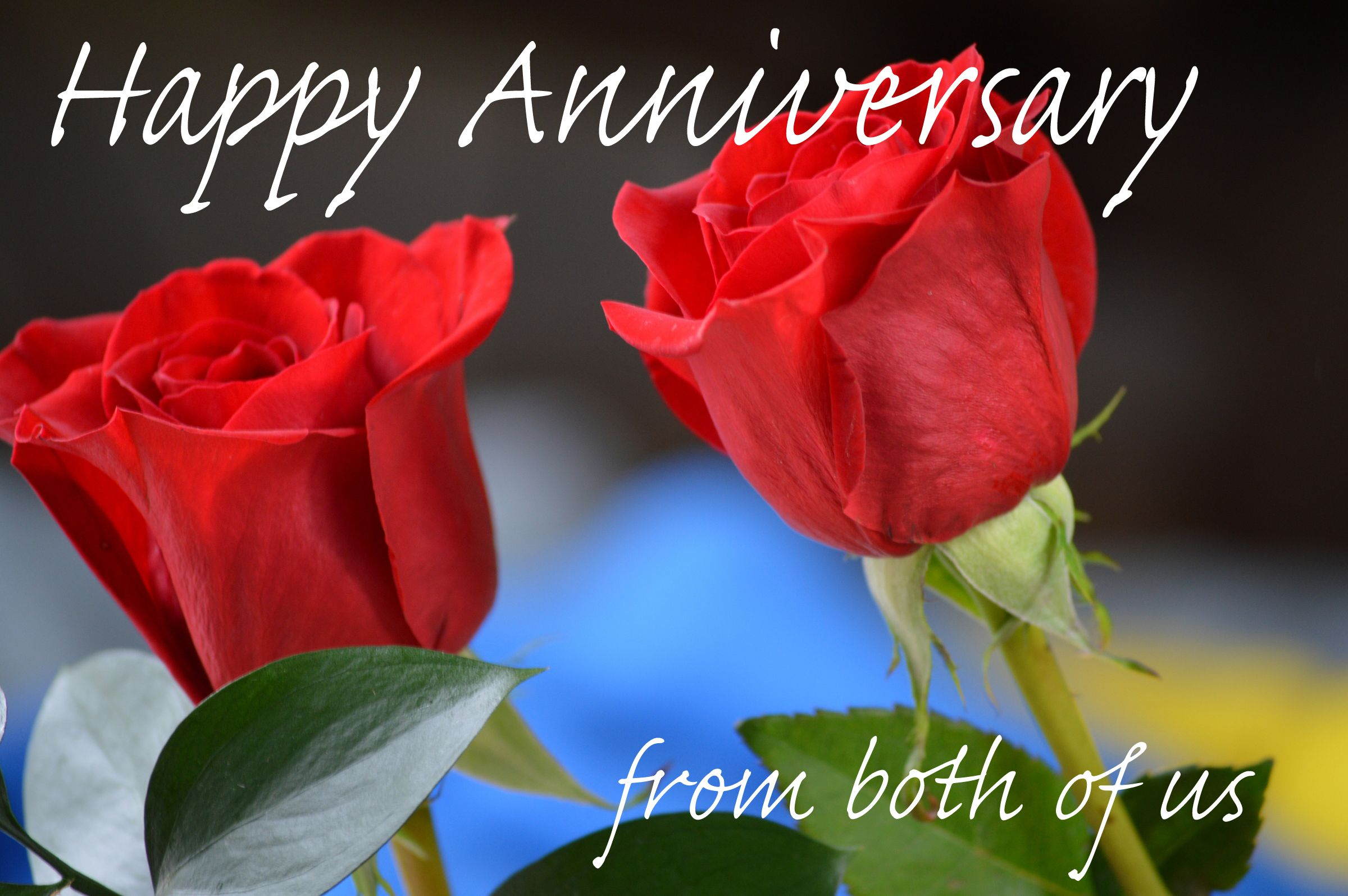 Digital Happy Anniversary Card From Both Of Us Happy Anniversary Cards E Greeting Cards Electronic Greeting Cards