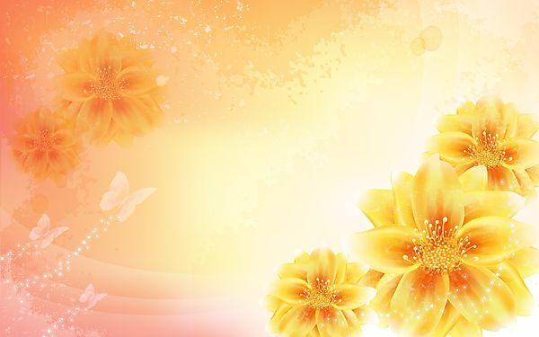 Cvety I Babochki Fony Dlya Prezentacij S Izobrazheniyami
