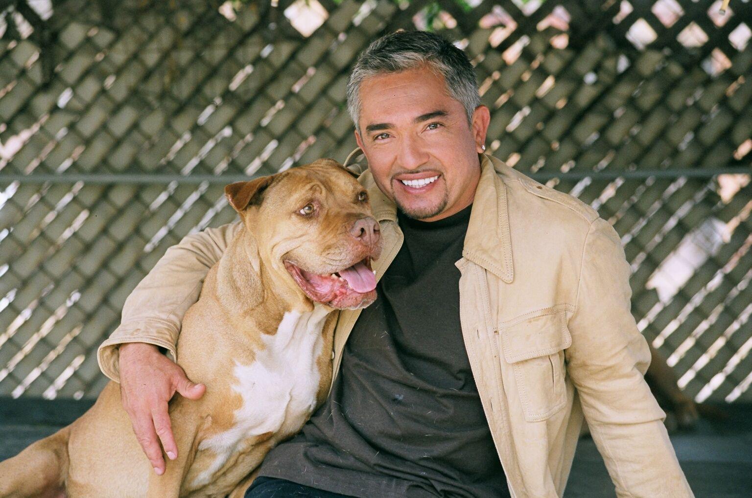 Auditions For Cesar Millan S Dog Whisperer In Houston Dog