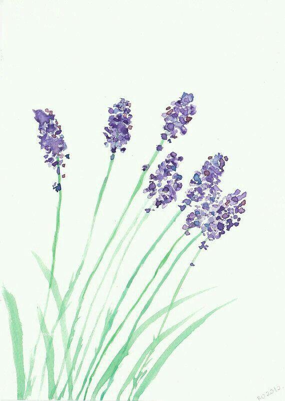 Aquarell Lavendel In 2020 Blumen Aquarell Aquarell Blumen