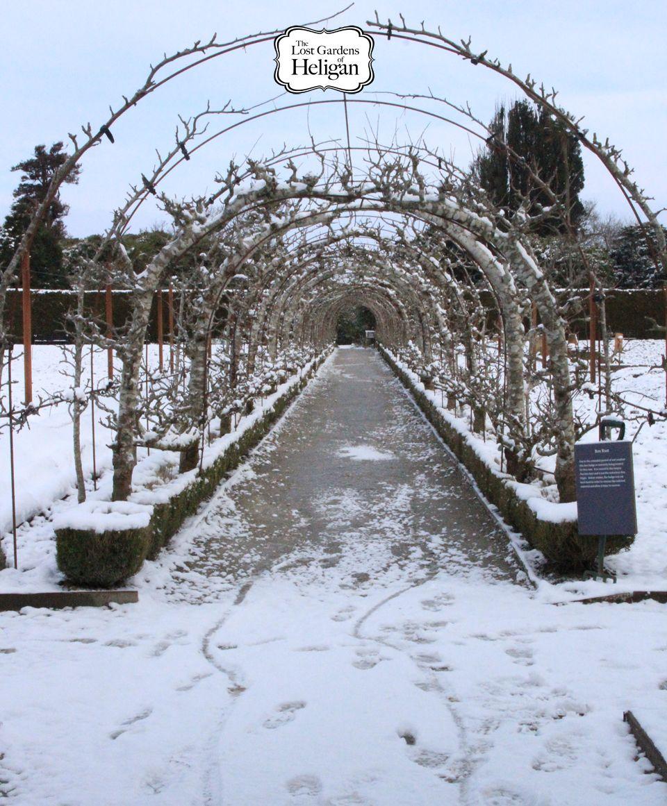 e2c4947687bc97604aec55b6d2f7c1d3 - Lost Gardens Of Heligan To Eden Project