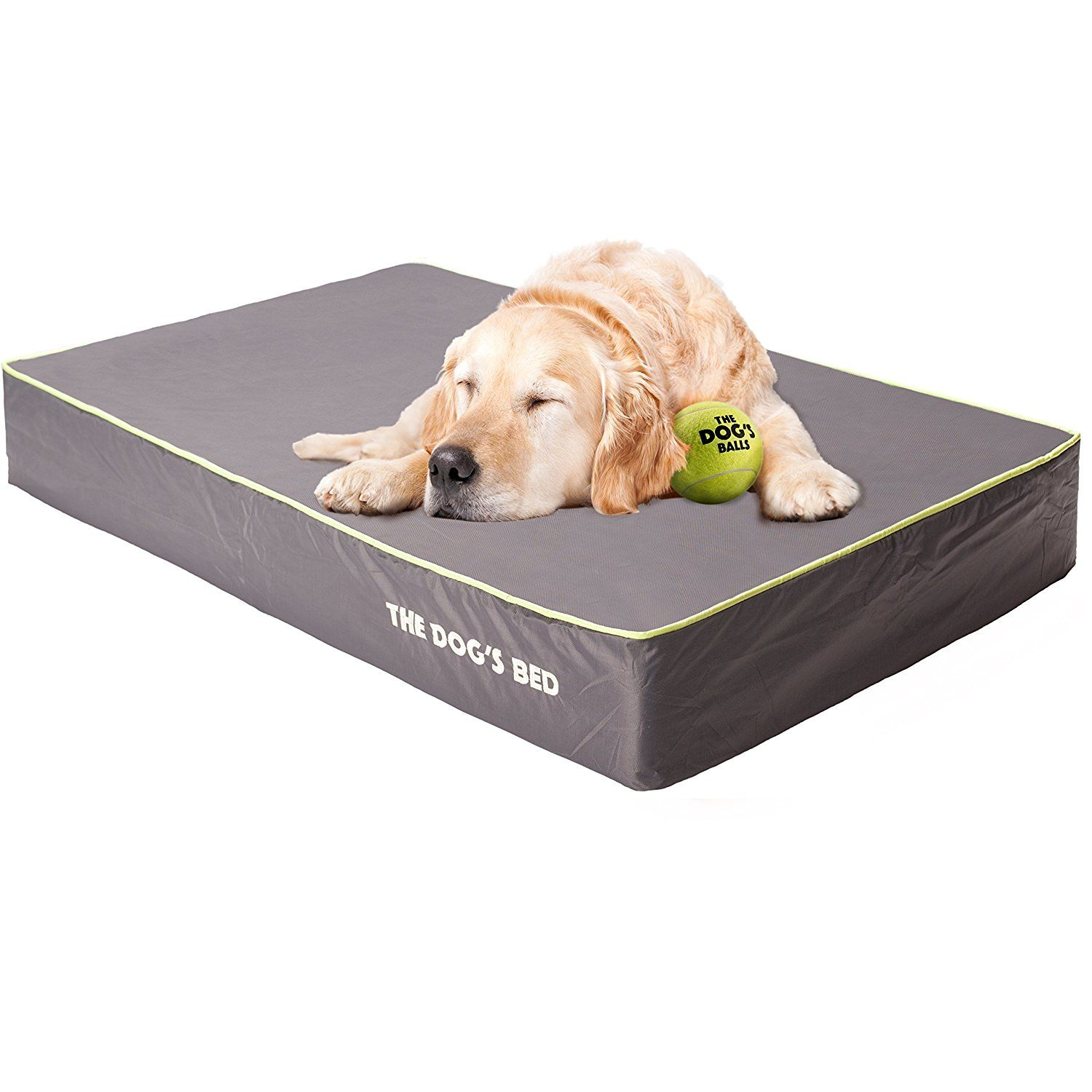Waterproof Washable Dog Beds (Reviewed March 2020) Buyer's