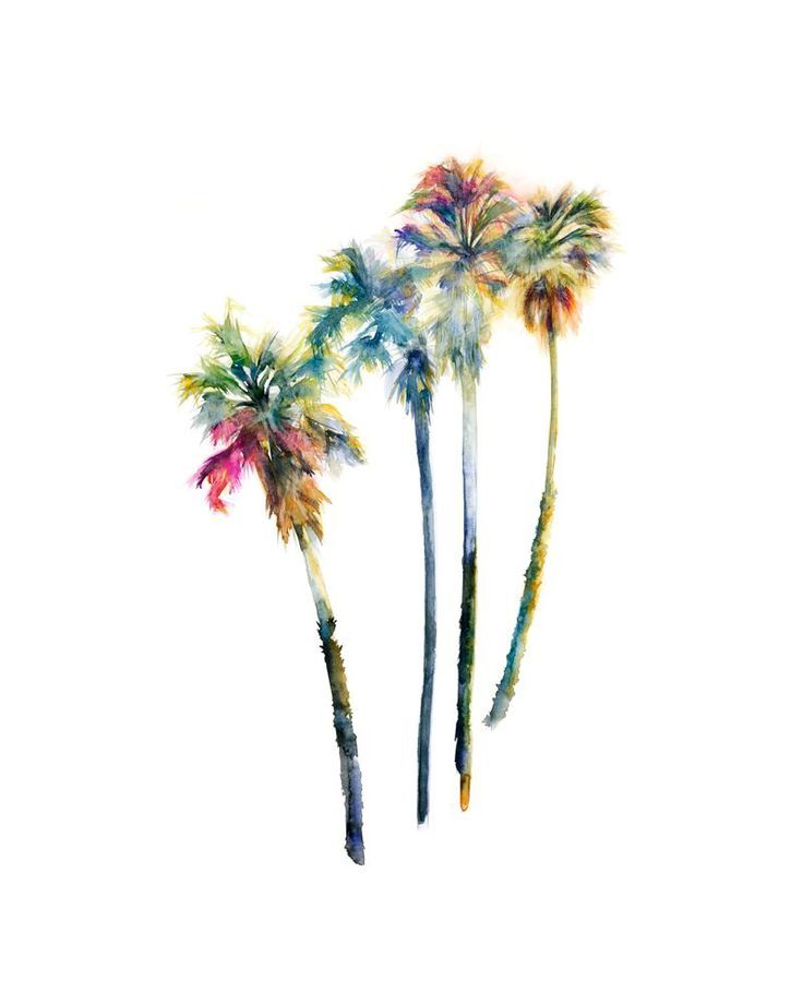 Watercolor Palm Trees By Shana Frase Palm Tree Tattoo Artwork