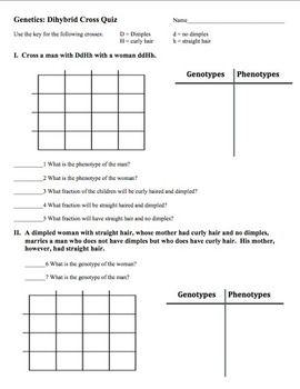 Monohybrid And Dihybrid Crosses Worksheet - worksheet