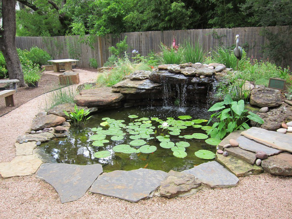 Backyard Information How Build Small Pond Your Garden Building A