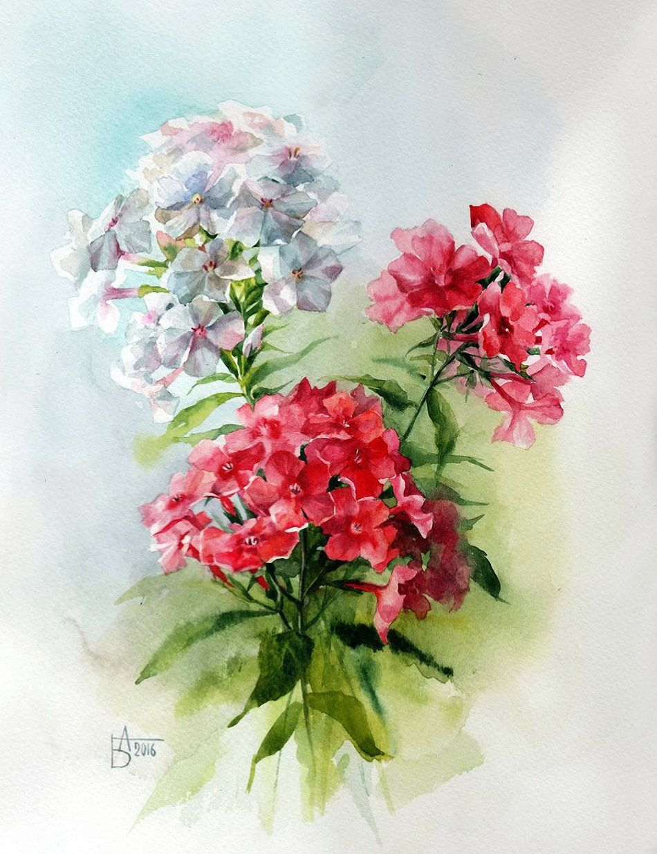 Нет ничего прекраснее цветов