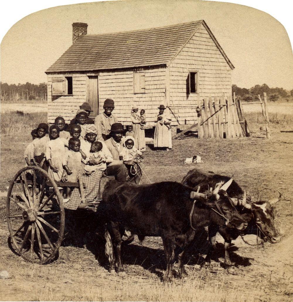 Family In Rural Mississippi, Ca 1890's