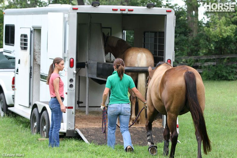 What Your Horse Needs to Know Before Getting in a Trailer