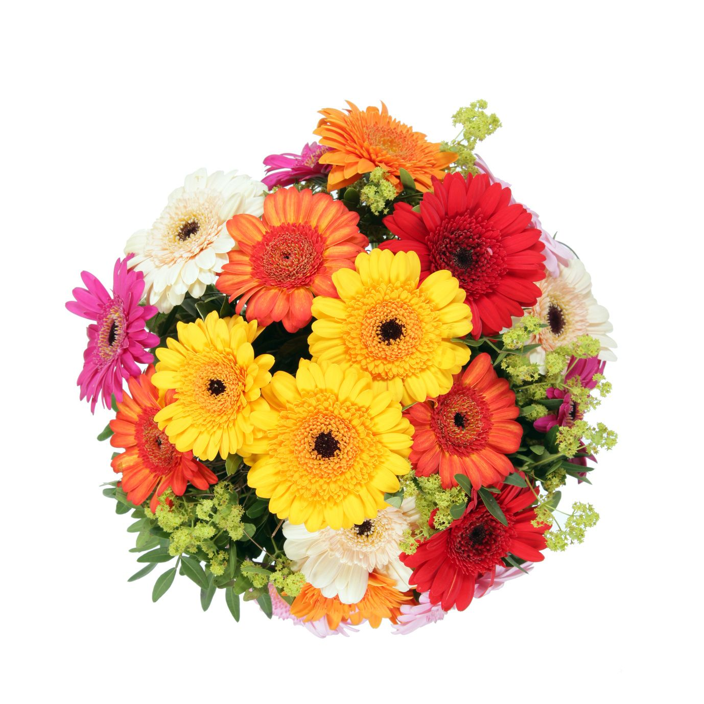 You can pick up or get flowers delivered from funeral flowers you can pick up or get flowers delivered from funeral flowers chicago to izmirmasajfo