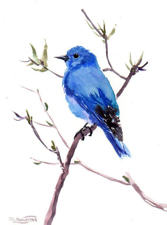 Mountain Bluebird, Original watercolor painting, 12 X 9 in, blue ...