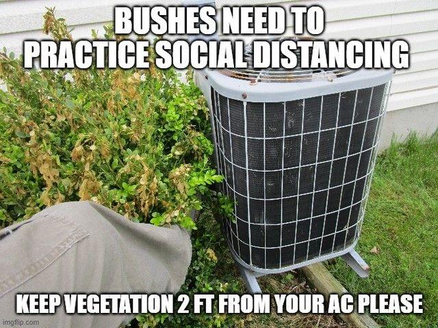 """Photo of Todd Engle, CMI auf Instagram: """"Denken Sie nach, bevor Sie pflanzen, und wenn Sie dieses Problem haben, ENTFERNEN Sie es. Das Einschränken des Luftstroms kostet Sie Geld und lässt Ihr System härter arbeiten."""