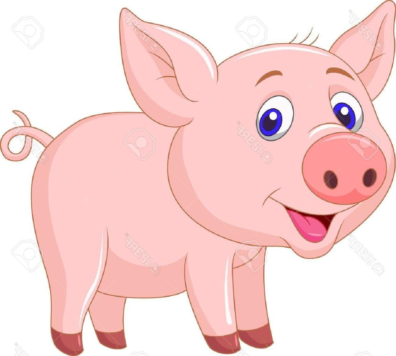 Cute Baby Pigs Baby Pigs Pig Cartoon