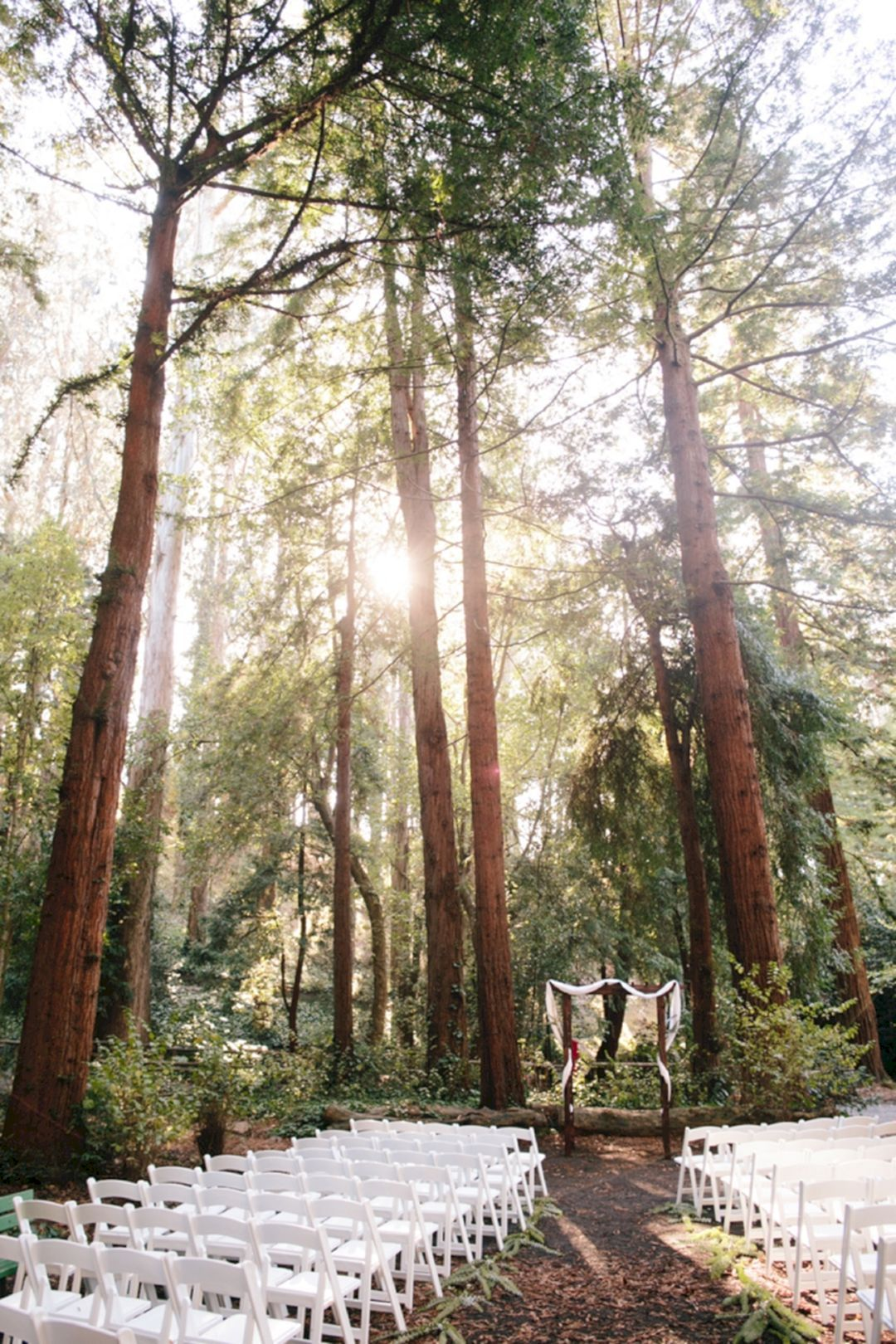 Best 55 Awesome Redwood Forest Wedding Venues For Perfect Oosile