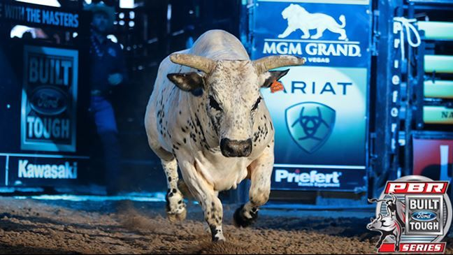 chad berger's smooth operater  pbr bull riding
