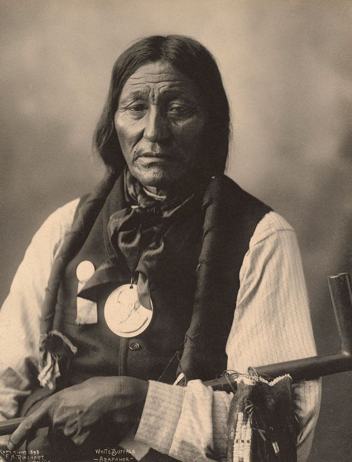 Imagen de http://www.firstpeople.us/native-american/photographs/White-Buffalo-Arapahoe-1898.jpg.