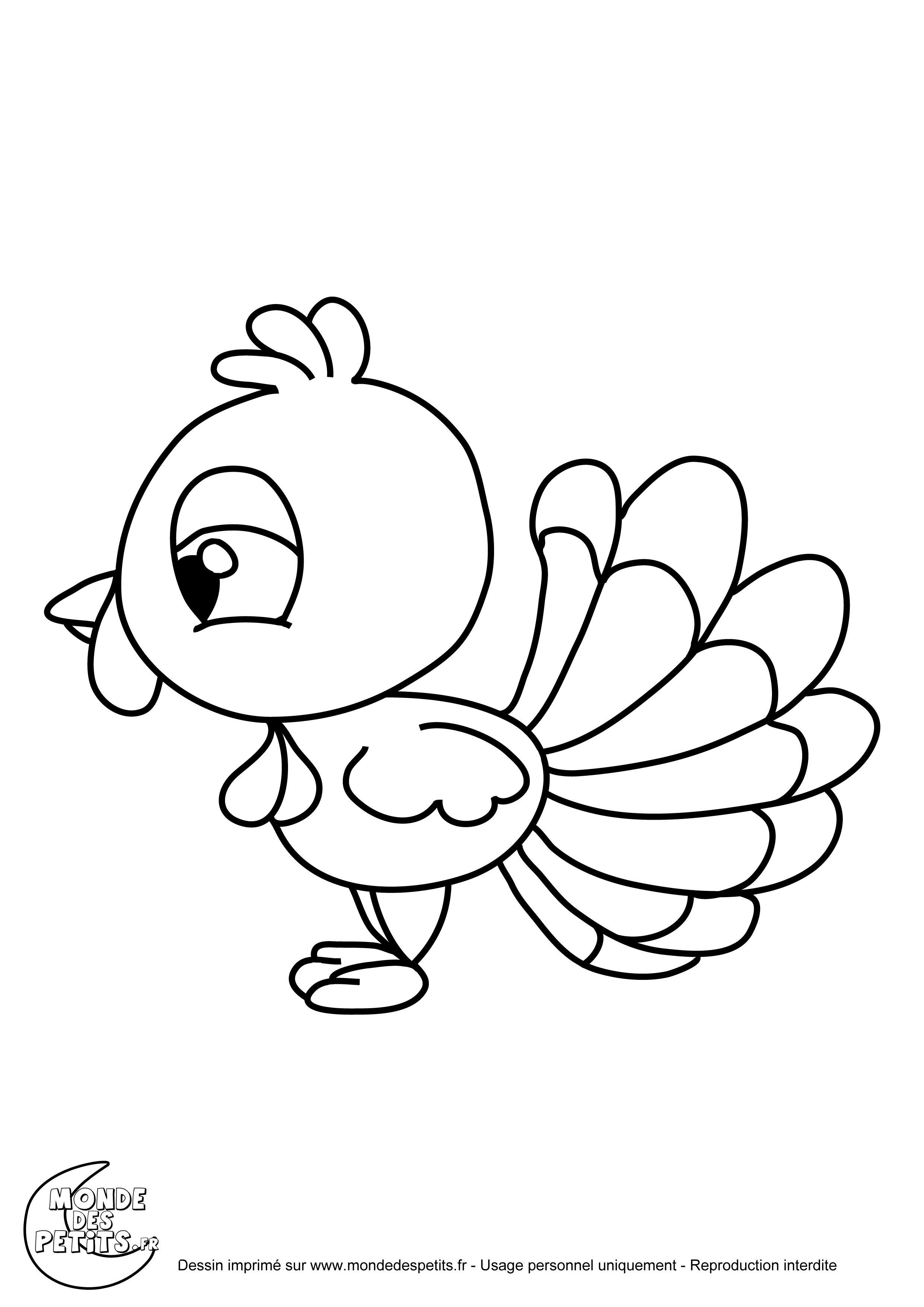 Dessin Dindon coloriage animaux de la ferme le dindon   activités enfants